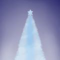 クリスマスツリー 冬