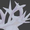 Blender ブーリアン モディファイアー 珊瑚 3DCG モデリング