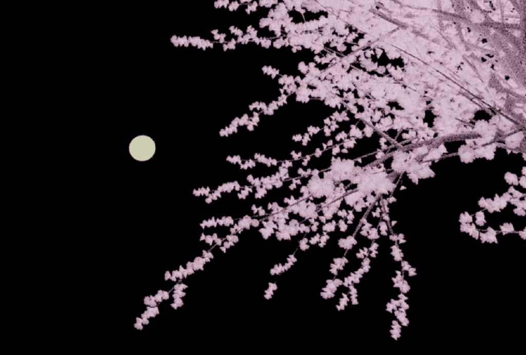 Blender 桜 3DCG モデリング 月夜 Sapling Tree gen アドオン