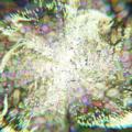 Blender パーティクルシステム エミッター 乱流 3DCG